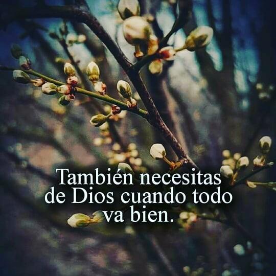 Frases de Dios También necesitas de Dios cuando todo va bien