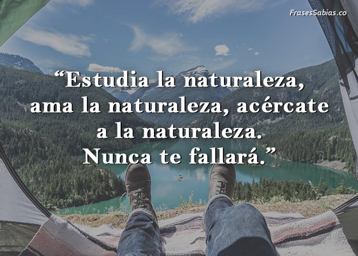 frase de estudia la naturaleza no te fallará
