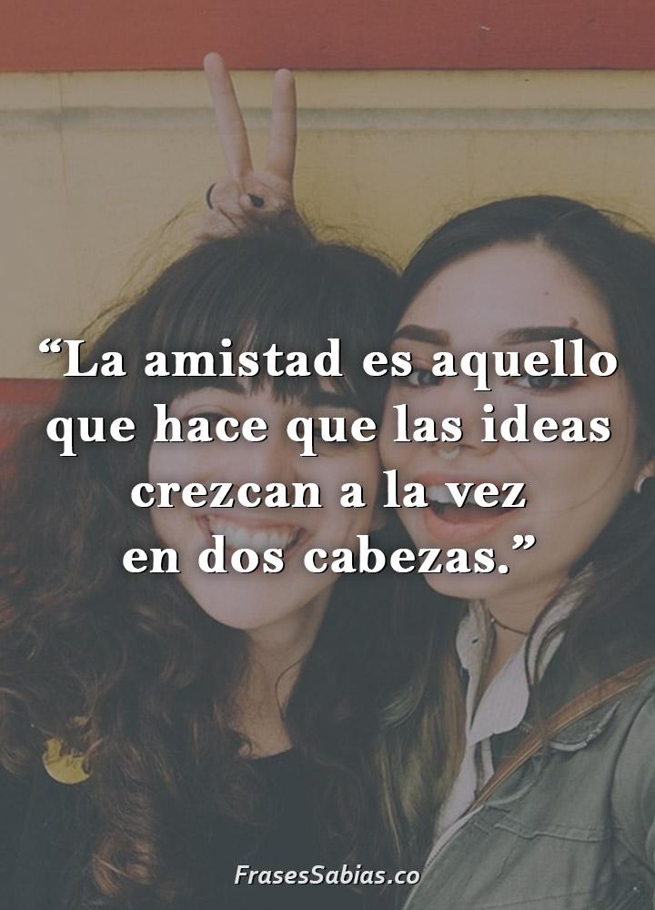 frases de amistad es aquello que hace que las ideas