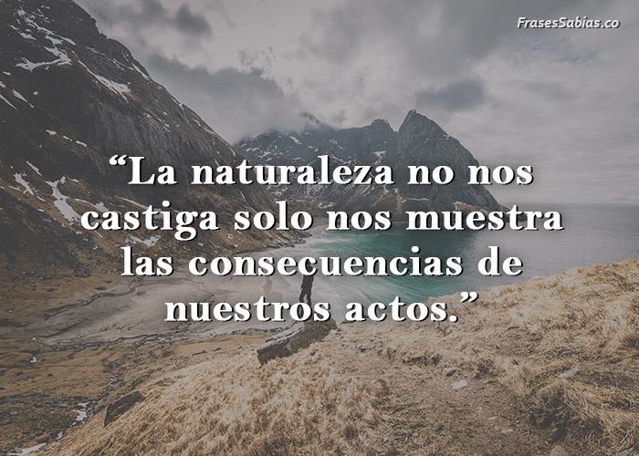 frases de la naturaleza no castiga solo consecuencias