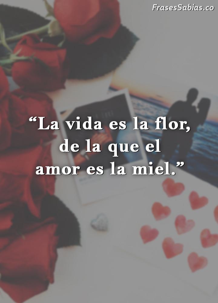 frases de la vida es la flor el amor es la miel
